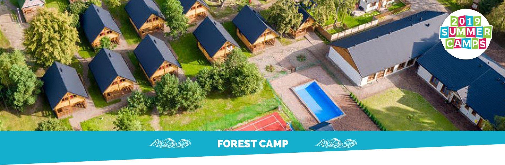 banner_gora_forest